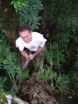 4.tree.climbing